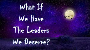 Leadership - do we get the leaders we deserve - petris lapis